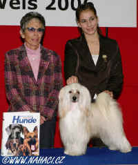 The best juniorhandler in Austria 2006 - Sandra Burger + Ich. Cody z Haliparku, judge: Lisbeth Mach, Switzerland