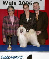 Sandra + Cody - 1st place in Juniorhandling in Austria 2006 !